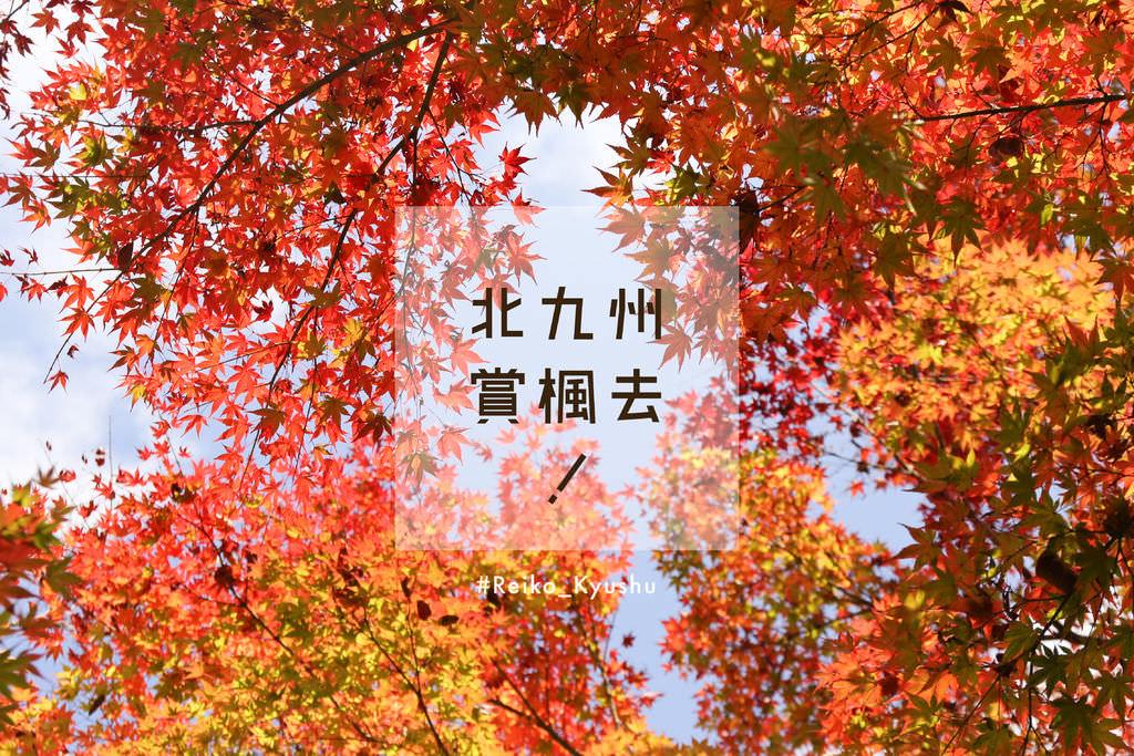 [九州] 紅葉絕景,北九州賞楓景點推薦!