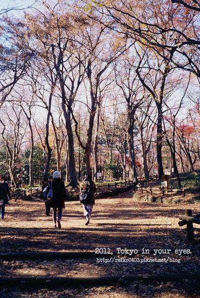 [東京] 你眼中的東京—底片機 Fujifilm Klasse S